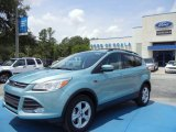2013 Frosted Glass Metallic Ford Escape SE 1.6L EcoBoost #67566217