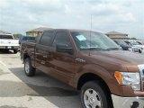2012 Golden Bronze Metallic Ford F150 XLT SuperCrew #67644568