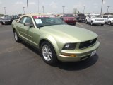 Legend Lime Metallic Ford Mustang in 2006