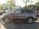 2010 Urban Titanium Metallic Honda CR-V EX-L AWD #67645198