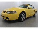 2003 Zinc Yellow Ford Mustang Cobra Convertible #67644357