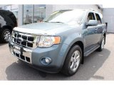2010 Steel Blue Metallic Ford Escape Limited V6 4WD #67744553