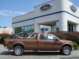 2012 Golden Bronze Metallic Ford F150 XLT SuperCab 4x4 #67744515
