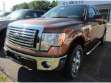 2012 Golden Bronze Metallic Ford F150 XLT SuperCab 4x4 #67845665