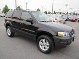 2006 Black Ford Escape XLT V6 4WD #67901241