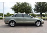 2002 Volkswagen Passat Fresco Green Metallic