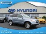 2008 Glacier Blue Metallic Honda CR-V EX-L #67900831
