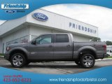 2011 Sterling Grey Metallic Ford F150 FX4 SuperCrew 4x4 #67961560