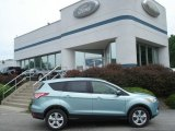 2013 Frosted Glass Metallic Ford Escape SE 1.6L EcoBoost 4WD #67961500