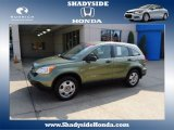2009 Green Tea Metallic Honda CR-V LX 4WD #68093312