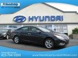 2013 Pacific Blue Pearl Hyundai Sonata Limited #68152428