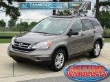 2010 Urban Titanium Metallic Honda CR-V EX #68223754