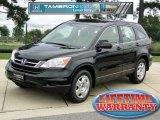 2010 Crystal Black Pearl Honda CR-V LX #68361729