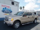 2012 Pale Adobe Metallic Ford F150 XLT SuperCrew #68406294