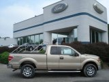 2012 Pale Adobe Metallic Ford F150 XLT SuperCab 4x4 #68468958