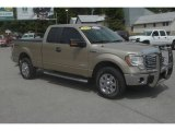 2011 Pale Adobe Metallic Ford F150 XLT SuperCab 4x4 #68523350