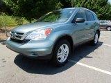 2010 Opal Sage Metallic Honda CR-V EX #68579517