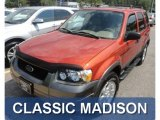 2006 Blazing Copper Metallic Ford Escape XLT V6 4WD #68664901