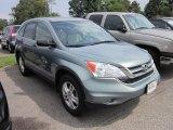 2010 Opal Sage Metallic Honda CR-V EX AWD #68772537