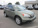 2009 Green Tea Metallic Honda CR-V EX 4WD #68772536