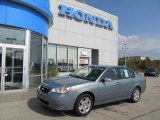2007 Golden Pewter Metallic Chevrolet Malibu LT Sedan #68771903