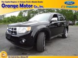 2009 Black Ford Escape XLT V6 4WD #68829738