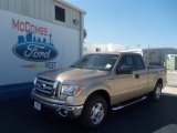2012 Pale Adobe Metallic Ford F150 XLT SuperCab #68953985