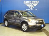 2009 Urban Titanium Metallic Honda CR-V EX 4WD #68953919