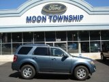 2010 Steel Blue Metallic Ford Escape Limited V6 4WD #68988112
