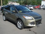 2013 Ginger Ale Metallic Ford Escape SE 2.0L EcoBoost 4WD #68988435