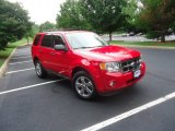 2009 Torch Red Ford Escape XLT V6 #68988352