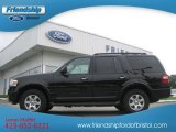 2010 Tuxedo Black Ford Expedition XLT 4x4 #69028572