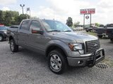 2011 Sterling Grey Metallic Ford F150 FX4 SuperCrew 4x4 #69029110