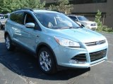 2013 Frosted Glass Metallic Ford Escape SEL 1.6L EcoBoost 4WD #69093979