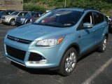 2013 Ford Escape Frosted Glass Metallic
