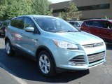 2013 Frosted Glass Metallic Ford Escape SE 1.6L EcoBoost 4WD #69093976
