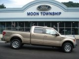 2012 Pale Adobe Metallic Ford F150 Lariat SuperCrew 4x4 #69149979