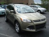 2013 Ginger Ale Metallic Ford Escape SE 1.6L EcoBoost 4WD #69213789