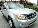 2009 Brilliant Silver Metallic Ford Escape XLT V6 #69213771