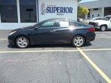 2013 Pacific Blue Pearl Hyundai Sonata Limited #69213733