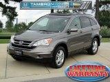 2010 Urban Titanium Metallic Honda CR-V EX-L #69214242