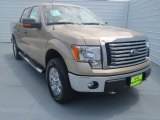 2012 Pale Adobe Metallic Ford F150 XLT SuperCrew 4x4 #69308087