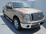 2012 Pale Adobe Metallic Ford F150 XLT SuperCrew #69308085