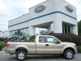 2012 Pale Adobe Metallic Ford F150 XLT SuperCab 4x4 #69351114