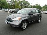 2010 Polished Metal Metallic Honda CR-V LX AWD #69351679