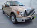 2012 Pale Adobe Metallic Ford F150 XLT SuperCrew #69351391