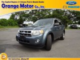 2010 Steel Blue Metallic Ford Escape XLT 4WD #69351359
