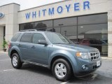 2010 Steel Blue Metallic Ford Escape XLT #69351546