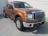 2011 Golden Bronze Metallic Ford F150 XLT SuperCrew 4x4 #69404147