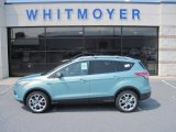 2013 Frosted Glass Metallic Ford Escape Titanium 2.0L EcoBoost 4WD #69461264